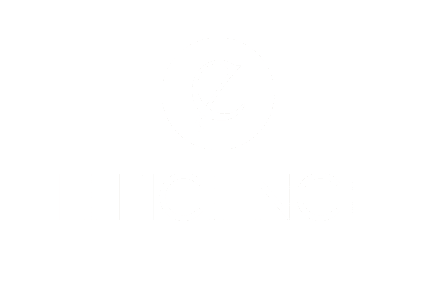 Efficience Groupe